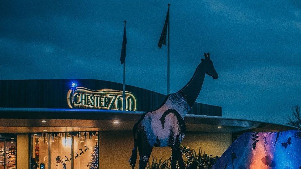 Donate to help Chester Zoo after the fire