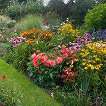 Summer Cottage Garden Favourites