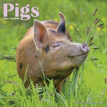Pigs Calendar 2020 from the CalendarClub.co.uk