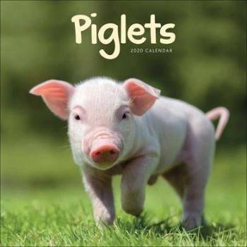 Piglets Mini Calendar 2020 from the CalendarClub.co.uk