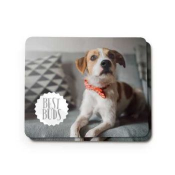 Put a photo of your pet on a photo gift with Snapfish.co.uk