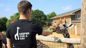 Visit Red Letter Days and enjoy 15% off their animal experiences