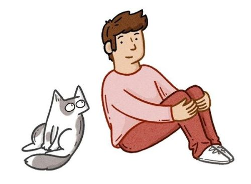 Find out about Cats Protection's online courses