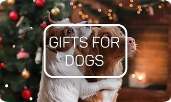 Take a look at Viovet's Christmas Gifts for Dogs