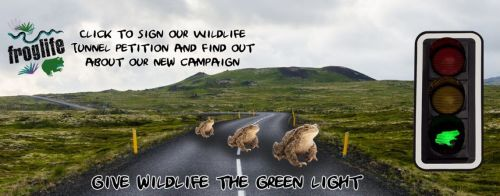 Join Froglife's campagin for Wildlife Trunnels - please sign their petition