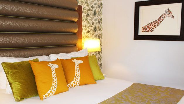 Edinburgh Zoo Entry and One Night Stay in a Giraffe Suite for Two at Hotel Indigo Edinburgh