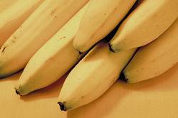 Help Butterflies with Bananas