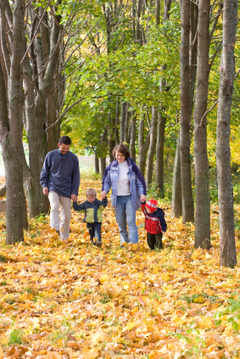 Half Term Ideas from the National Trust