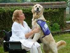 Canine Partners Elizabeth & Wesley