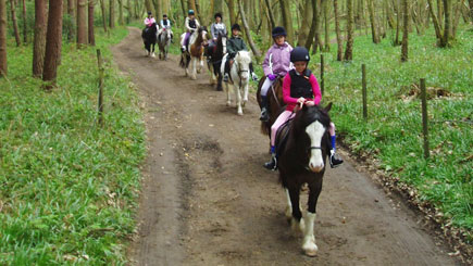 Horse Riding and a Picnic, Tadworth, Surrey