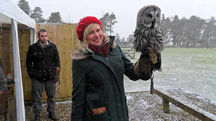 Owl Encounter at Falcon Days in Northumberland