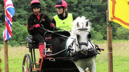"Try your hand at Carriage Driving with ""Carriage Driving for Two"""