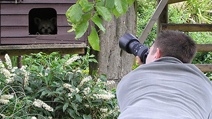 Wildlife photography experience days