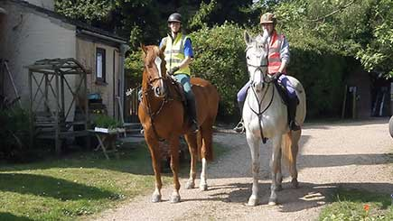 Half Day Horse Riding in East Sussex