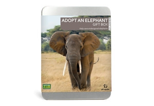 Adopt an elephant from Colchester Zoo