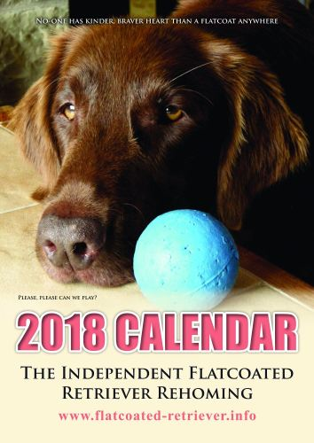 2018 calendar front page