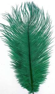 Ostrich Feather - Emerald Green