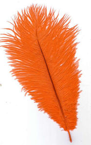 Ostrich Feather - Orange