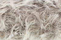 Luxury Fur - Wolf 4213