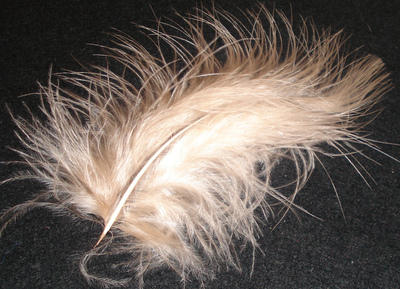 Marabou Feather - Peach