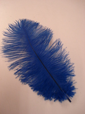 Ostrich Feather - Royal Blue