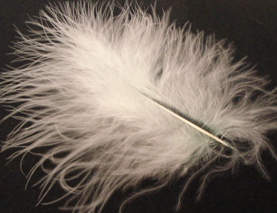 Marabou Feather - Cream