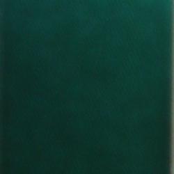 RIBBON - SPRUCE 785