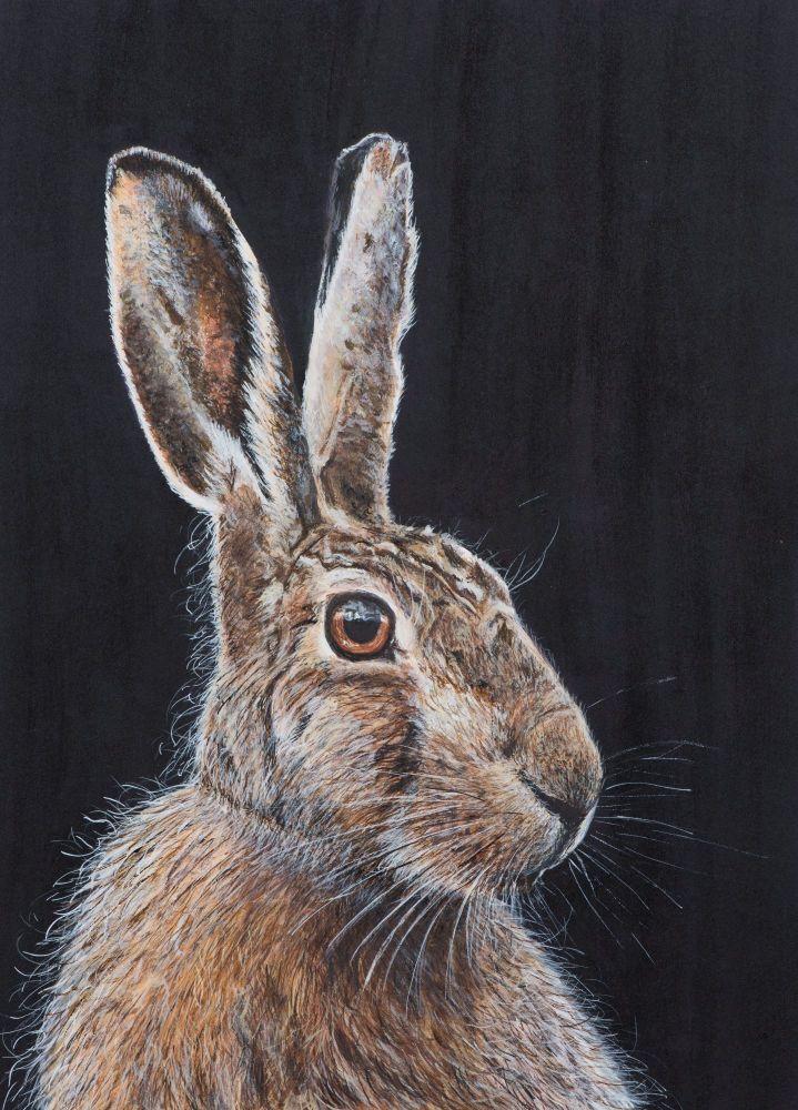 'Untamed Hare' 25cm x 33cm