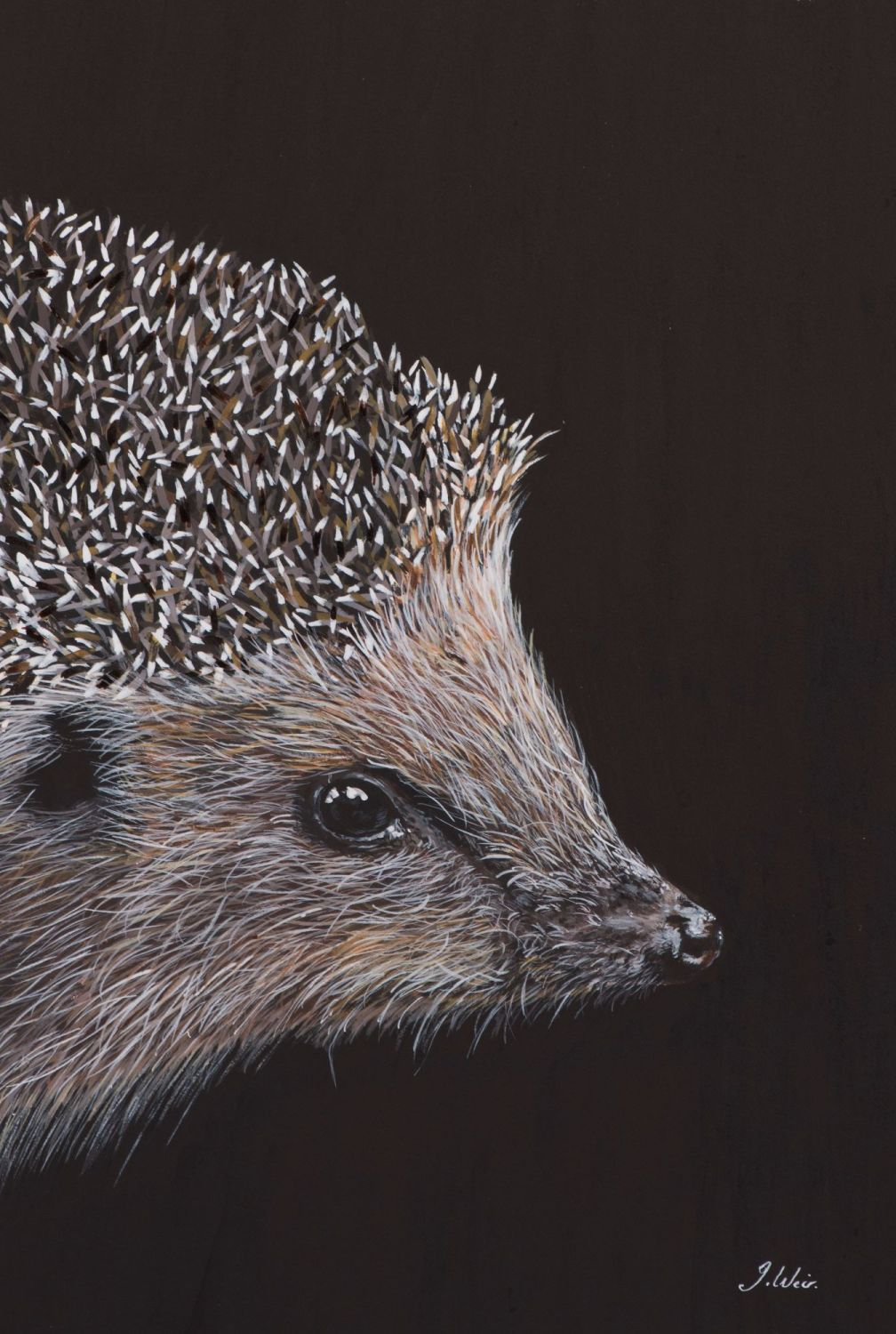 'Prickles' The Hedgehog  25cm x 33cm