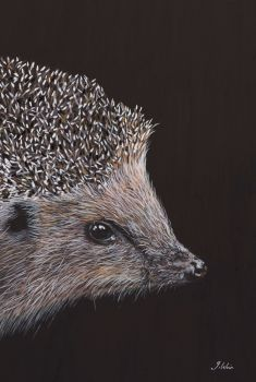 'Prickles' The Hedgehog Giclee print size 25cm x 33cm