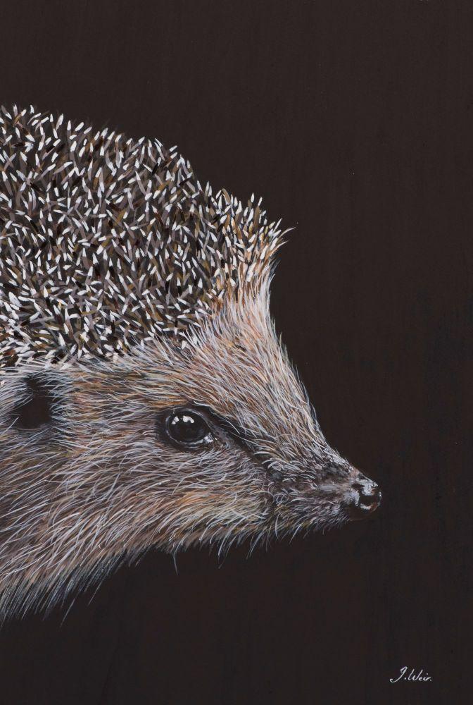 'Prickles' The Hedgehog  25cm x 33cm