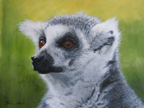 'Lemur' 25cm x 33cm