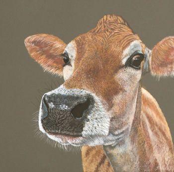 Jersey Cow Giclee print size  34cm x 34cm