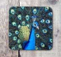 Coaster, Peacock