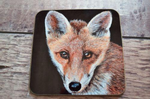 Coaster, Fox