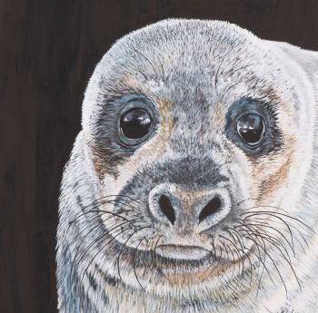 'Look into my eyes' Seal, original painting