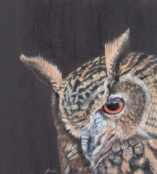 'Twit who?' European Eagle Owl.  Original painting