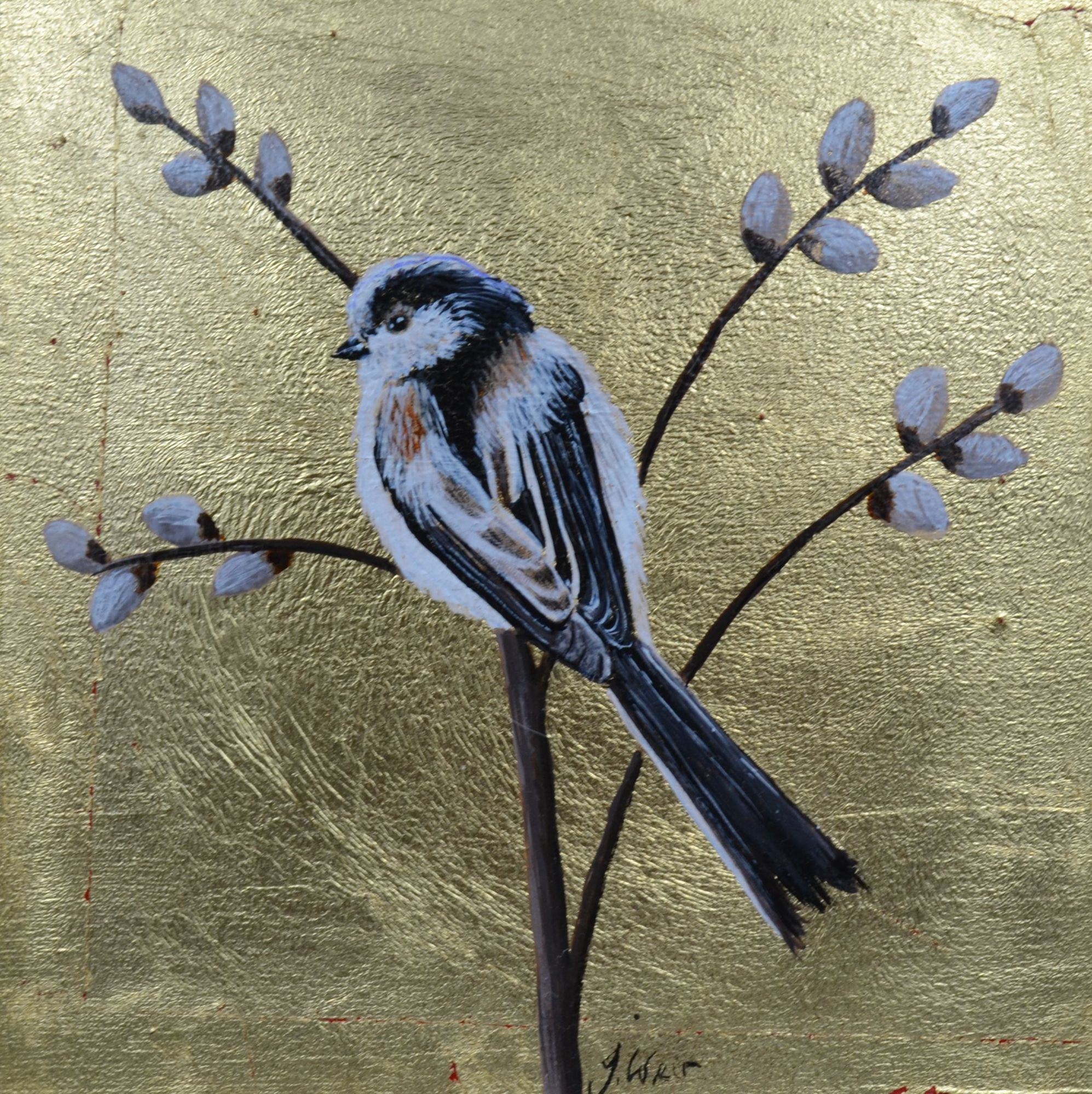 How to paint a Long tailed tit