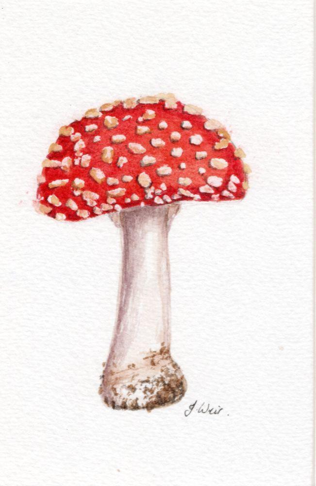 Small watercolours