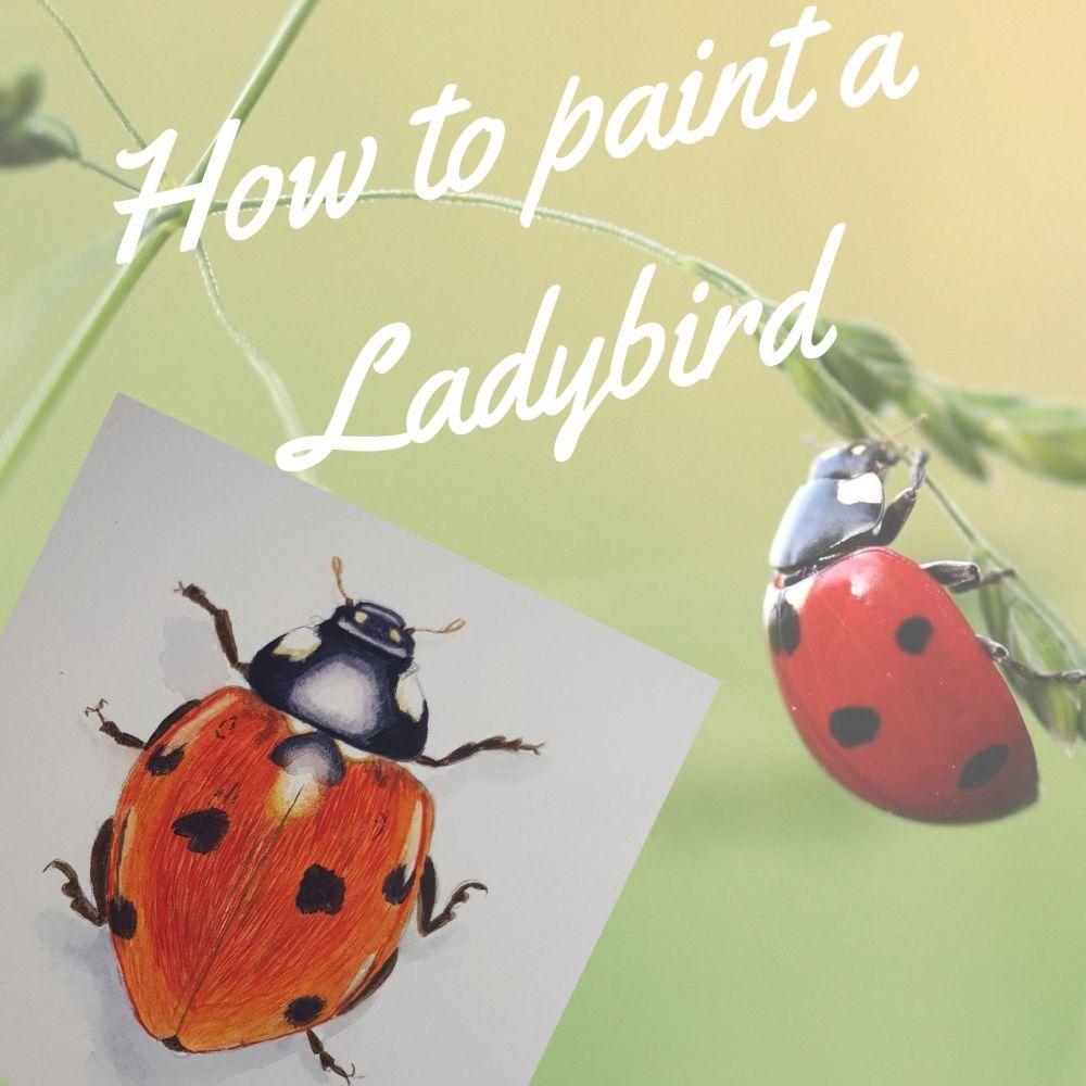 How to paint a Ladybird/ Ladybug.