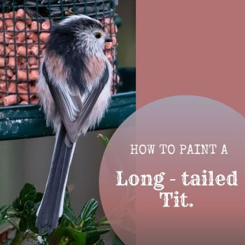 How to paint a Long - tailed tit.