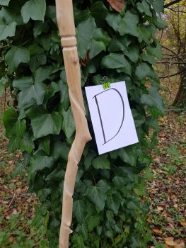 Gandalf  Walking Stick 177cm