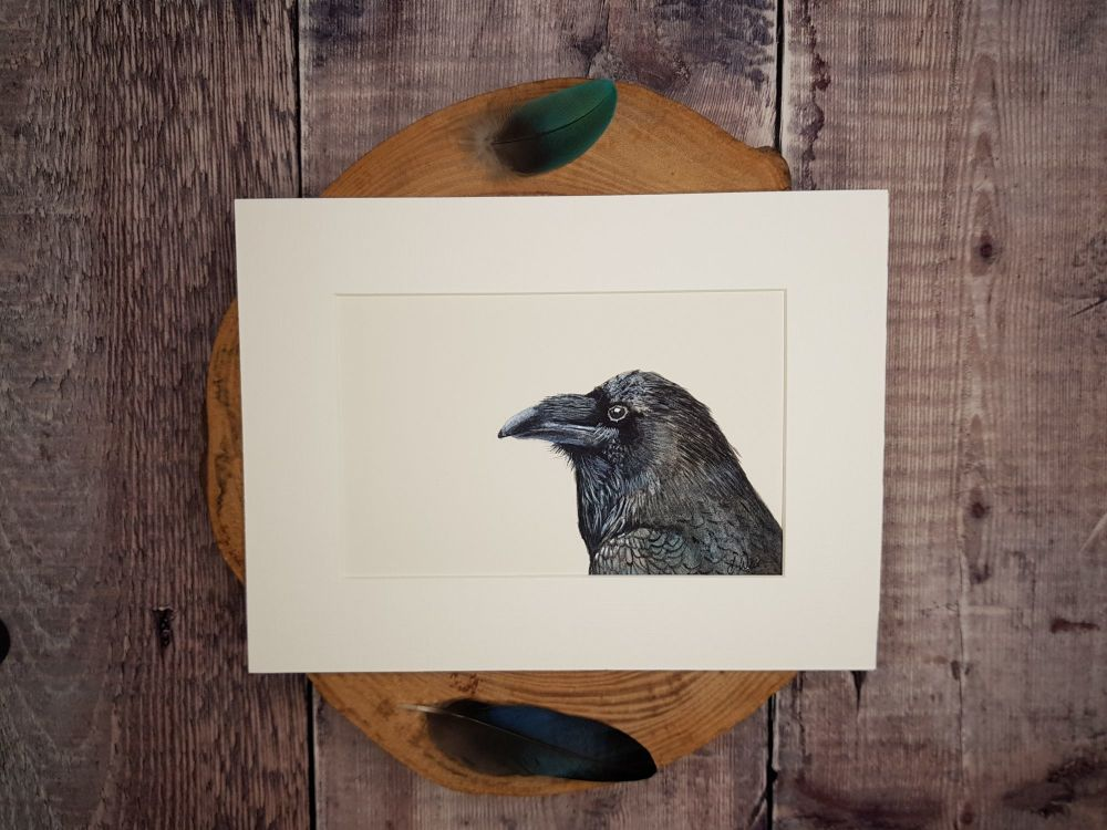 Raven Original Watercolour Painting.