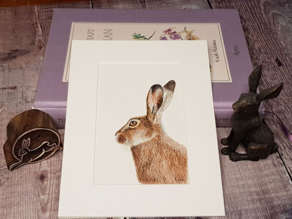 Little Hare, Original Watercolour Painting.