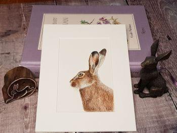 Little Hare, Original Watercolour Painting.