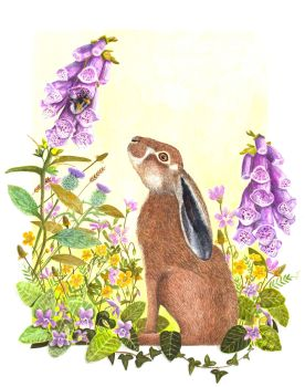 The Hare & the Bumblebee.