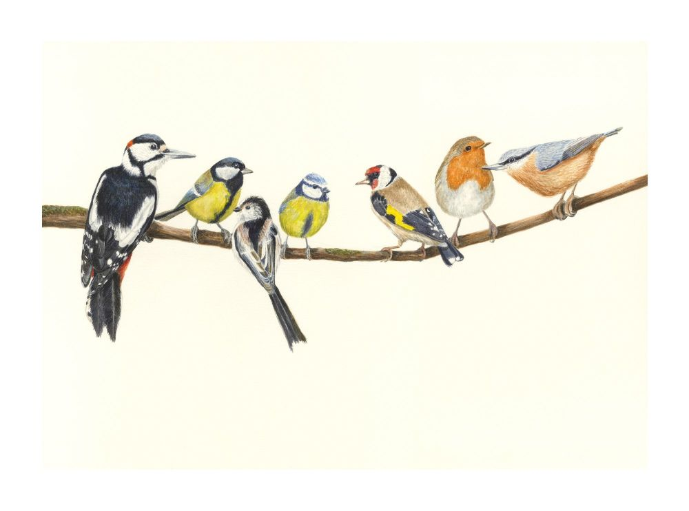 Birds on a branch print.