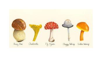 Mushroom Print.