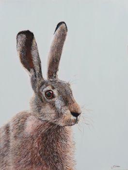 A3 Hare Print, 42cm x 29.7cm.