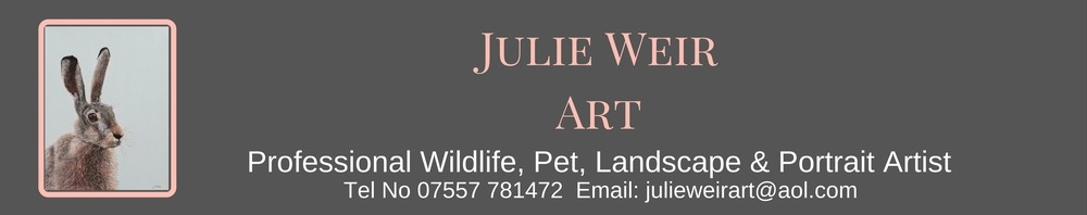Julie Weir Art, site logo.